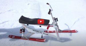World Cup SX5 Skibob zerlegen